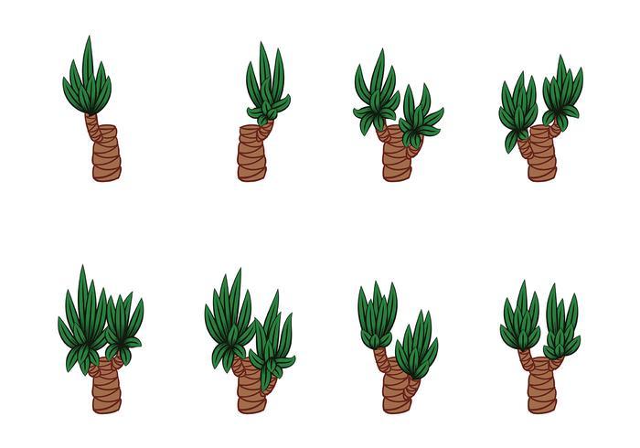 Yucca Vectors