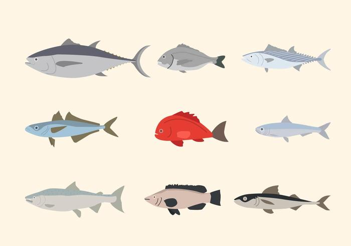Vettori di pesci piatti
