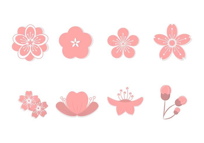 Flat Peach Blossom Vectors