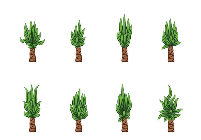 Yucca Vector