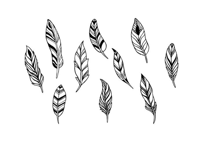 Free Feathers Vector