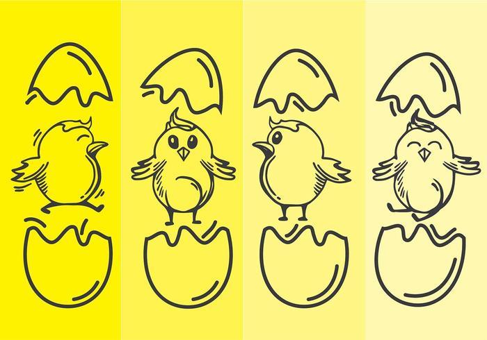 Easter Chick Line Art Vector