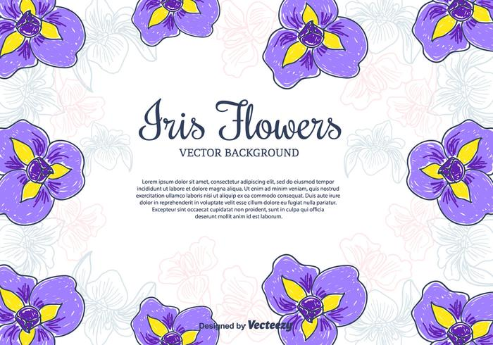 Iris Flowers Vector Background