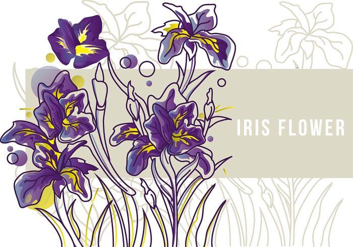 Iris blomma Banner Line Art