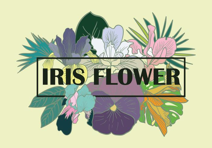 Iris Flower Element Vector