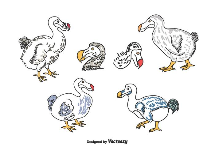 Hand Drawn Dodo Set