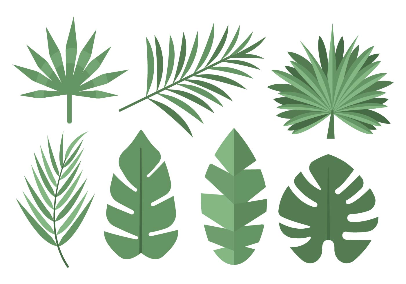 tropical palm leaves vector download free vector art