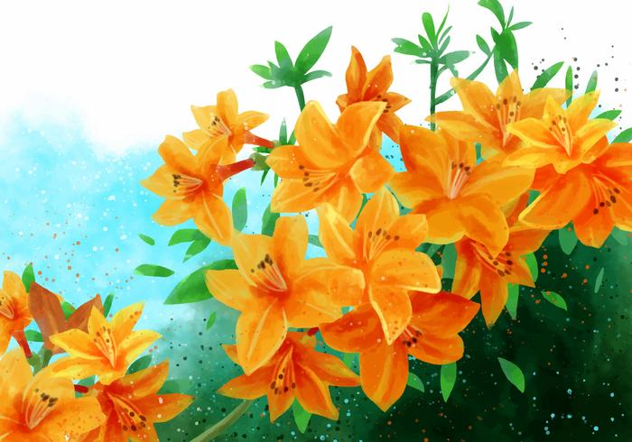 Rhododendron gouden adelaar