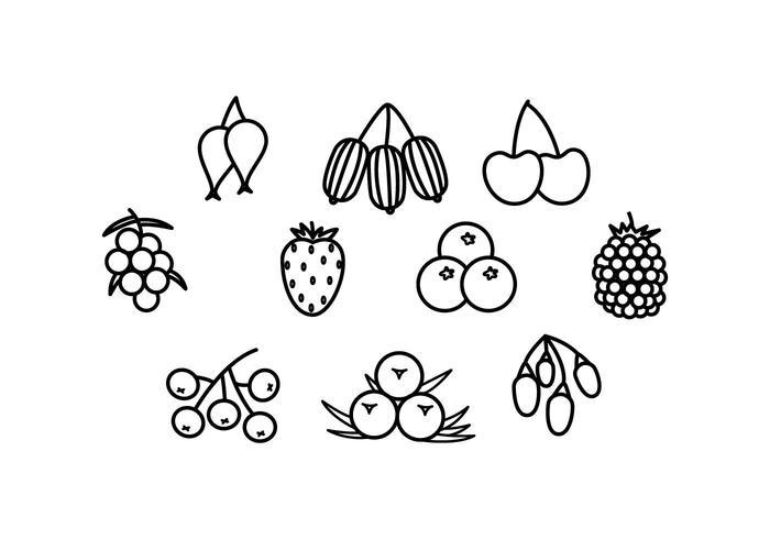Free Berries Line Icon Vector