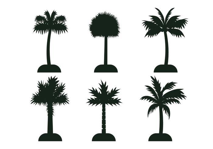 Palmetto tree vector silhouette