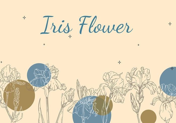 Iris Flower Background Outline Free Vector