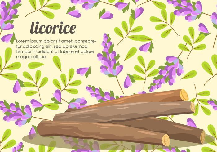 Licorice Root And Flower Vector