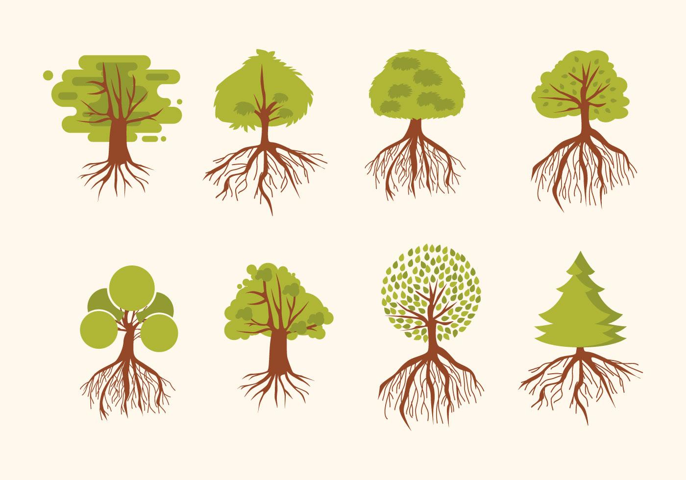 Картинки кусты с корнями