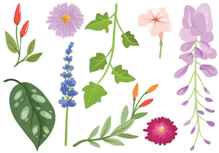 Gratis Garten-Blumen-Vektoren