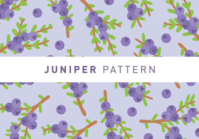 Juniper Pattern Wallpaper