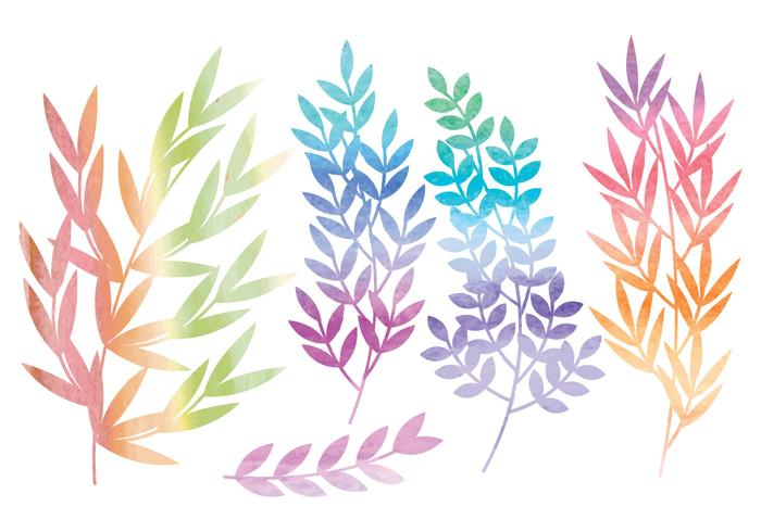 Vector Watercolor Branches and Floral Set