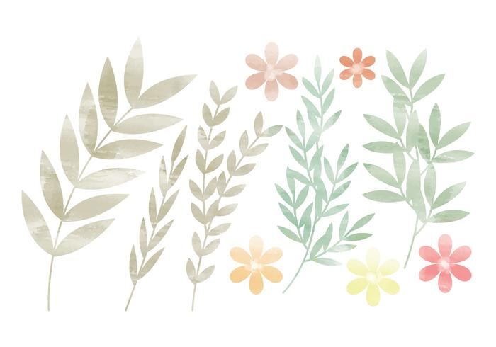Vector Colorful Branches and Floral Set