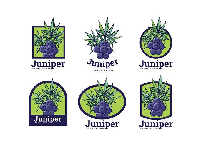 Juniper Logo Vector libre