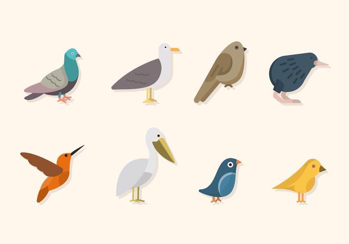 Flache Vogelvektoren