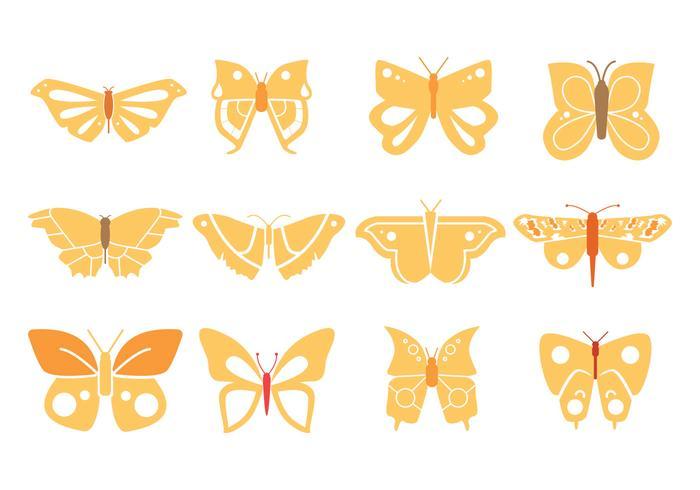 Conception papillons