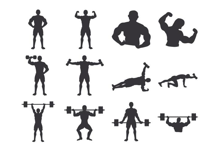 bodybuilder Body vector