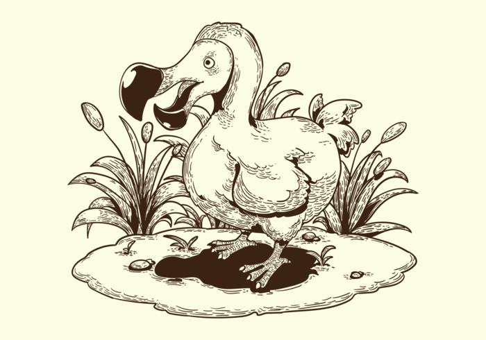 Free Hand Drawn Dodo Bird Vectors