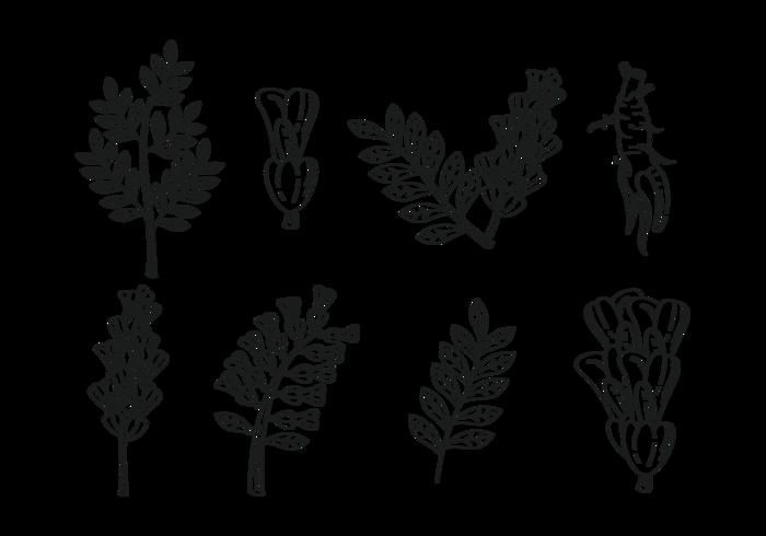 Licorice Icons Vector