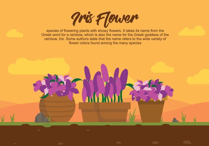 Iris bloem op pot illustartion