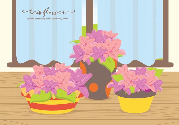 Iris Flower On The Table Illustration
