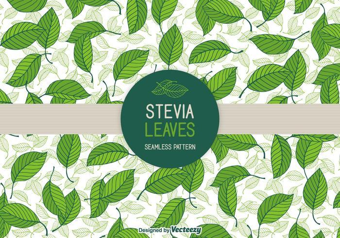 Stevia Bladeren Vector Naadloze Patronen