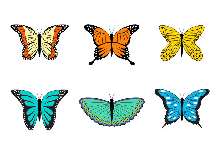 Collection Of Mariposa Vector
