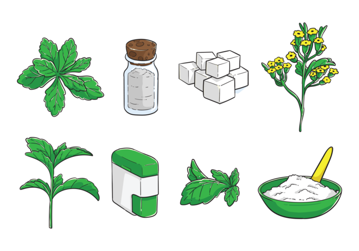 Free Hand Drawn Stevia Vector