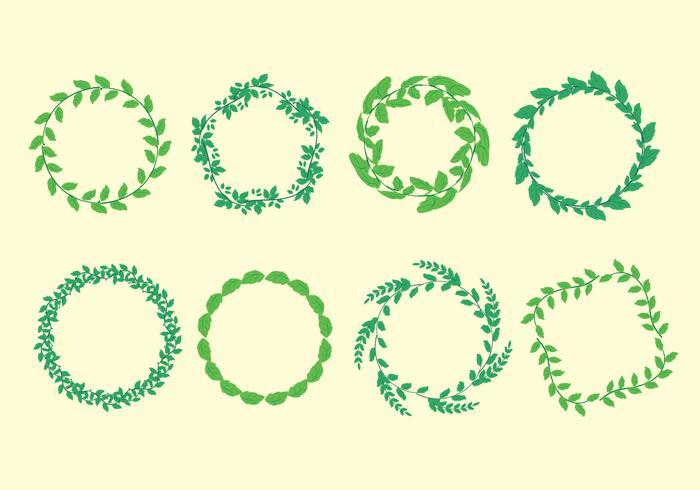 Stevia Leaf Frame Vector