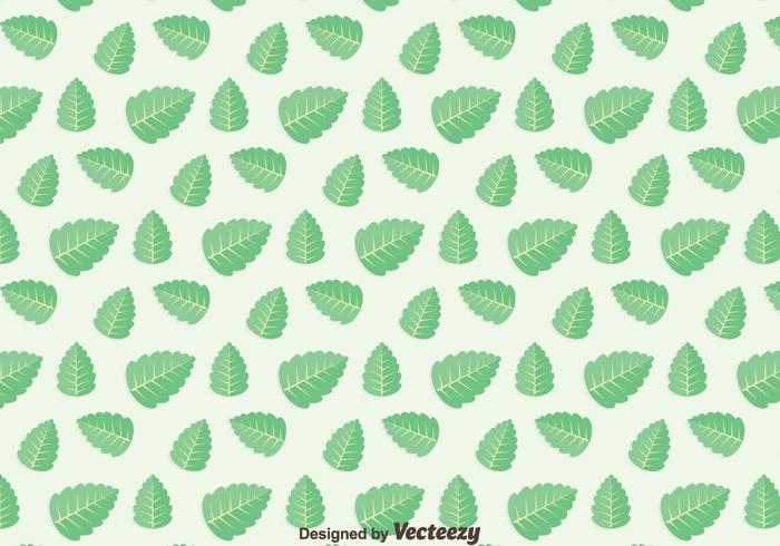 Green Leaf Stevia Pattern Vector