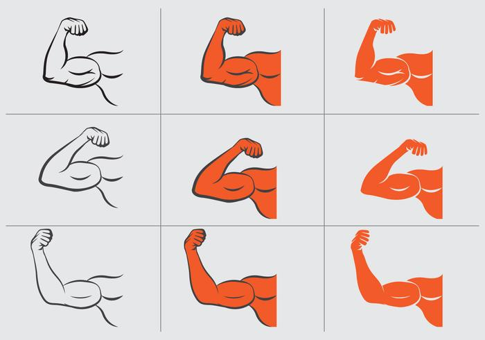 Flexing Hand Vector Set