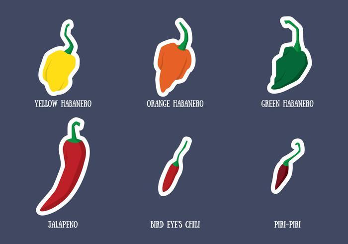 Habanero And Chili Vector