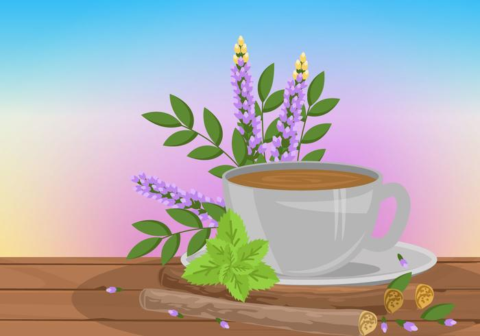 Licorice Root Tea Vector