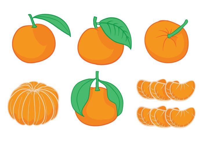 Conjunto de vectores de clementina