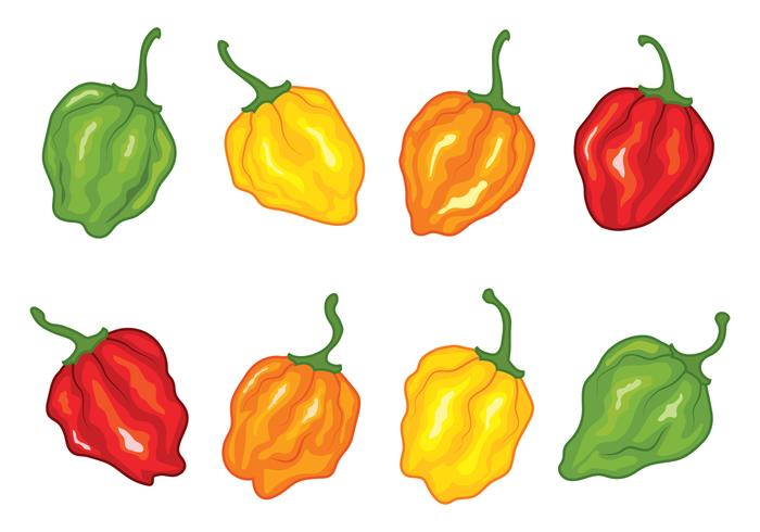 Habanero Papper Vectors Pack