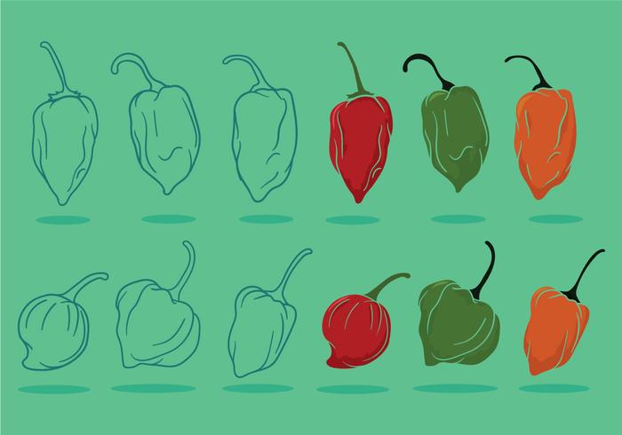 Habanero vector set