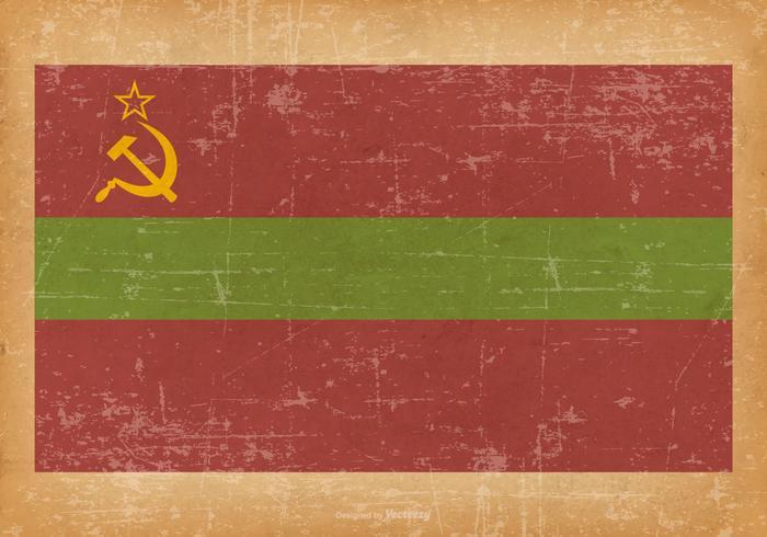 Grunge flagga av Transnistria