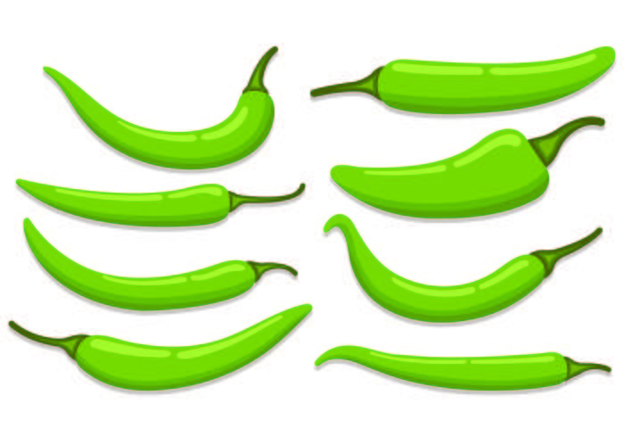 Set Of Chili Vectors