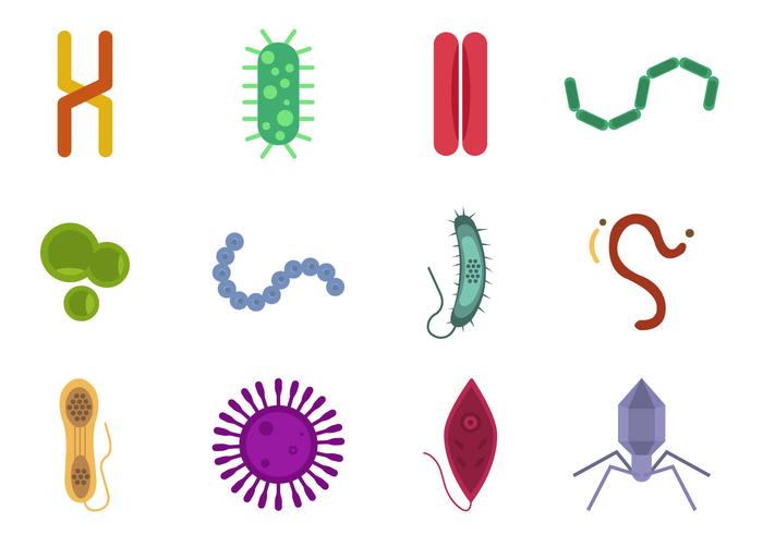 Mold and Virus Vector Collections