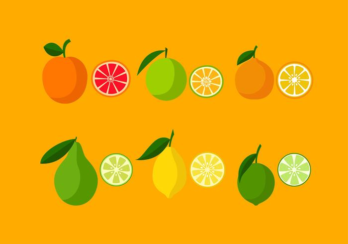 Various Orange Icon Set Free Vector
