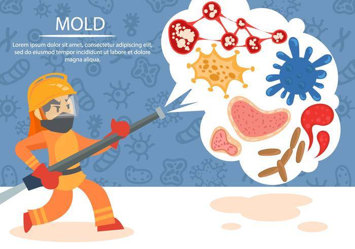 Cleaning Molds and Bacterias Vector Background