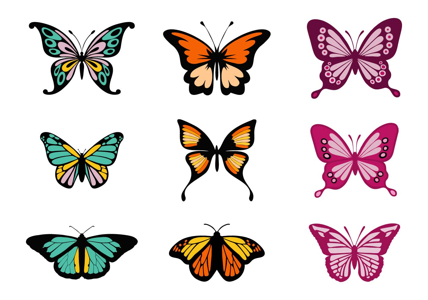 an introduction to the nature and the types of butterflies the flying insects Butterfly pictures, photos, images, butterflies, picture, photo, pics.