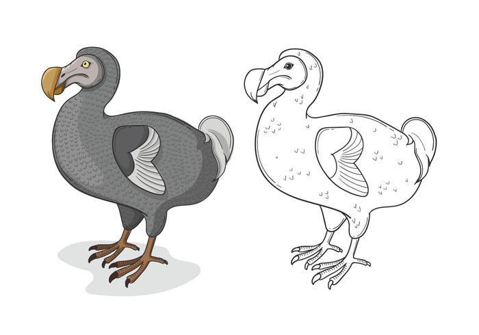 Grey Dodo Bird Illustration