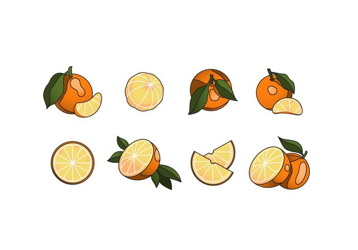 Free Clementine Vector Pack