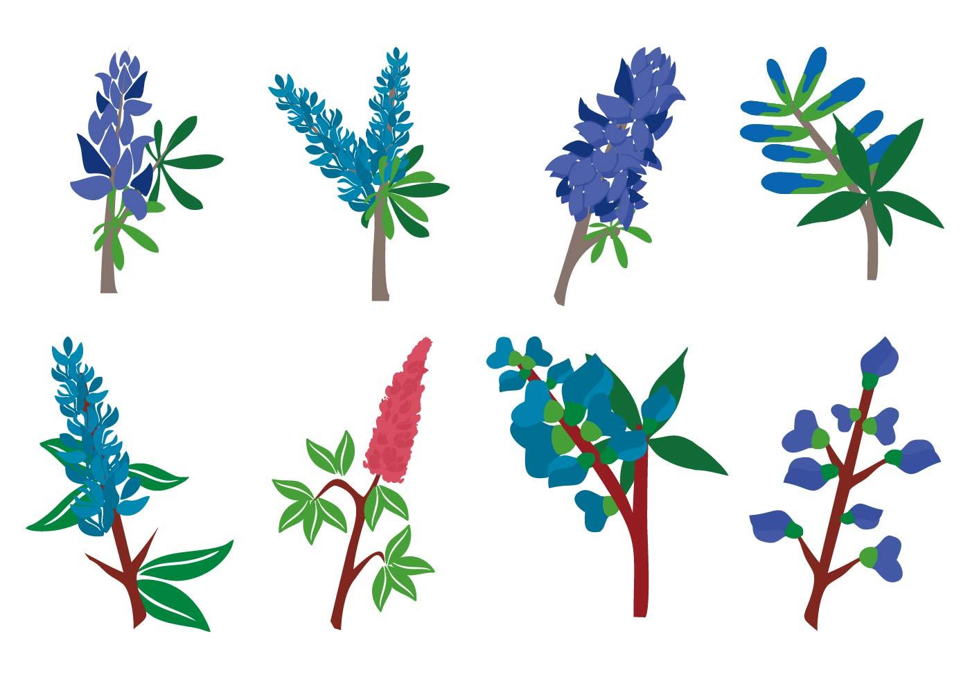 Free Bluebonnet Flower Vector Download Free Vector Art Stock