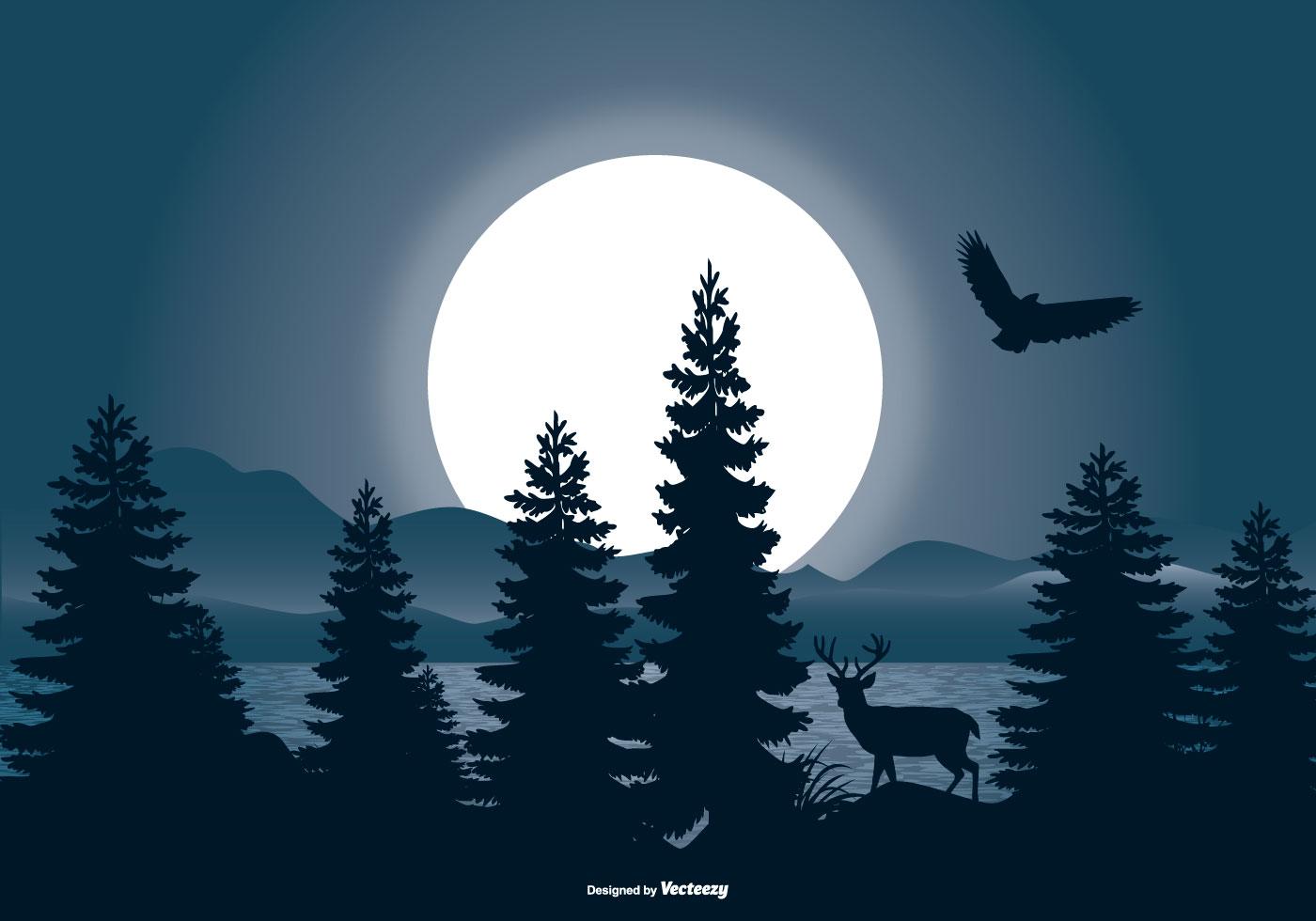 Beautiful Night Landscape Scene Download Free Vector Art